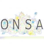 ONSA WOKSHOP | 何もかもが「偽物」のような、独特の、居心地の悪さ