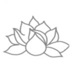 【お知らせ】| ONSA Web. WORKSHOP 基礎コースのみ追加募集中<!--【年末年始用】--><!--【05】-->